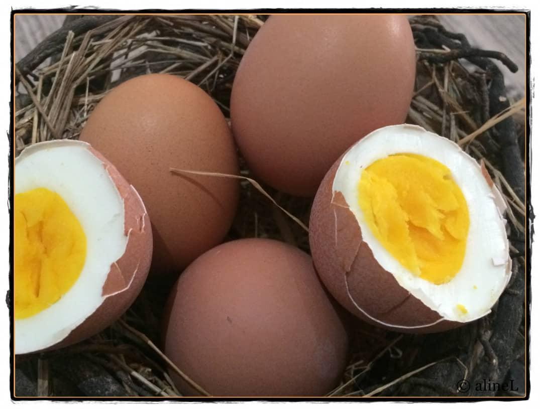 Eier Morgenroutine