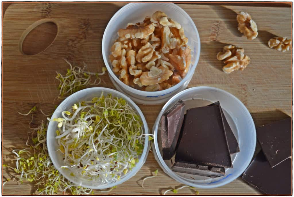 Snackbox Brainfood