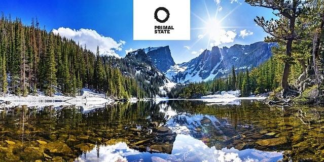 Primal State Erfahrungen