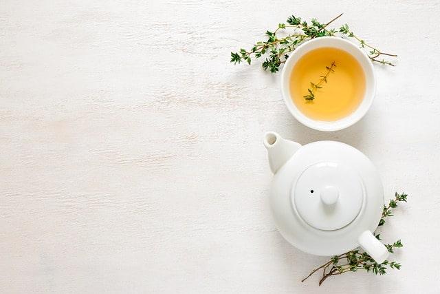 Grüner Tee und Zweige mit Tasse und Kanne