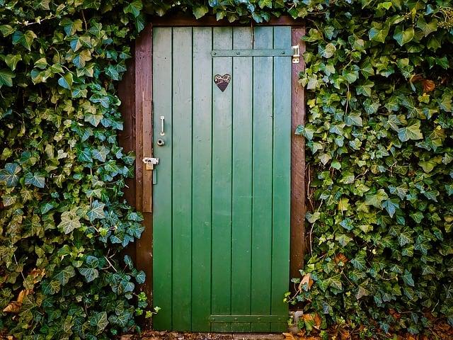 grüner Toilettentür mit Efeu