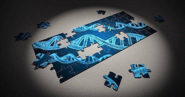 Abnehmen mit DNA