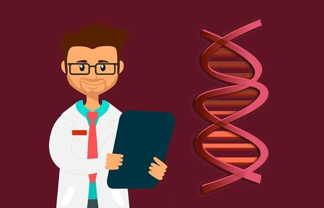 DNA Diät Erfahrung